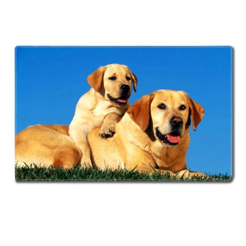 Dogs Labradors Couple Baby Puppy Care Table Mats Customized Made To Order Support Ready 24 Inch (610Mm) X 14 15/16 Inch (380Mm) X 1/8 Inch (4Mm) High Quality Eco Friendly Cloth With Neoprene Rubber Liil Deskmat Desktop Mousepad Laptop Mousepads Comfortabl front-58642