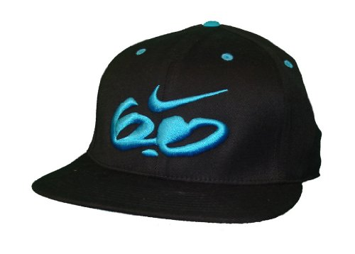 Nike 6.0 SB Skateboard Flexfit Hat Black and Blue Size M/L