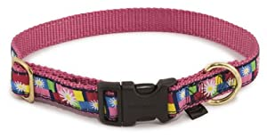 Premier Pet Fido Finery Quick Snap Collar Size Large 1-Inch Daisy Block