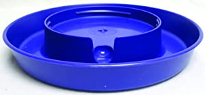 Little Giant Purple Screw-On Base for 1-Gallon Plastic Poultry Waterer