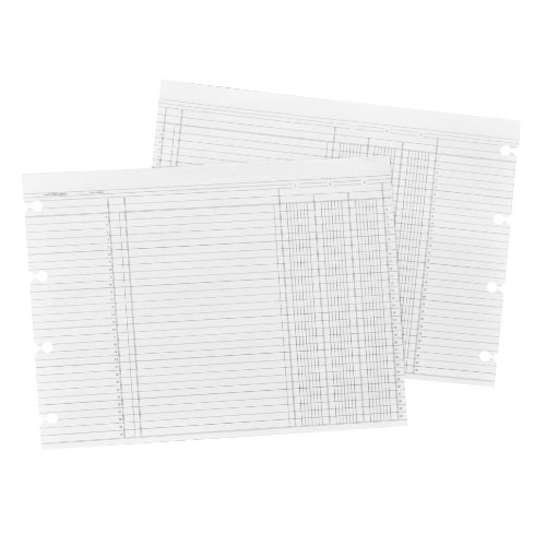 Wilson Jones White End-Balance Ledger Forms, Both Sides Alike, 7.5 x 10.38 Inches, 100 Sheets per Pack (WN1DA)