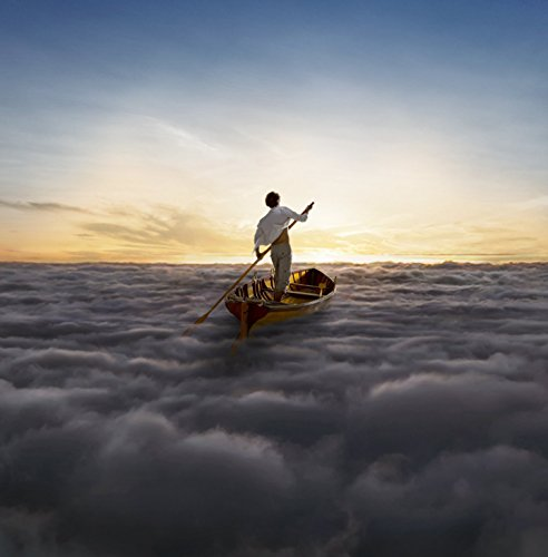 The Endless River (2 LP)