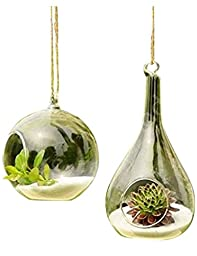 3 BEES® Pure Manual Blown Processed Hanging Terrarium Glass Vase Flower Plant Pot Container Planter for Home Decoration,Hand Blown Glass Vase Orb and Teardrop(Set of 2)