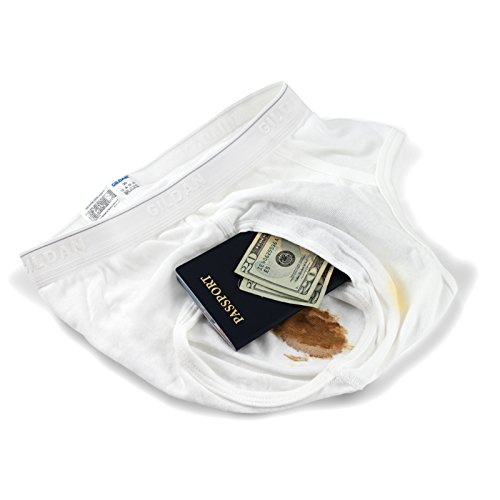 The Brief Safe Hidden Contents Travel Passport Wallet - Diversion Safe