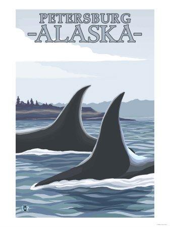 Orca Whales #1, Petersburg, Alaska