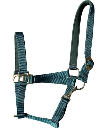 Harry's Horse Halfter Padded olivgrün Shetty