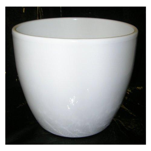 Ivyline White Ceramic Planter, 10cm Internal Diameter