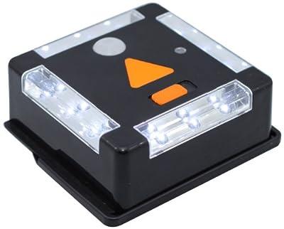 Tri-Lynx 12-LED Light with Motion Sensor