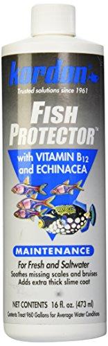 kordon-31456-fish-protector-for-aquarium-16-ounce
