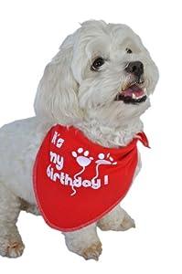 Ruff Ruff and Meow Doggie Bandana, Its My Birthday, Red, Large