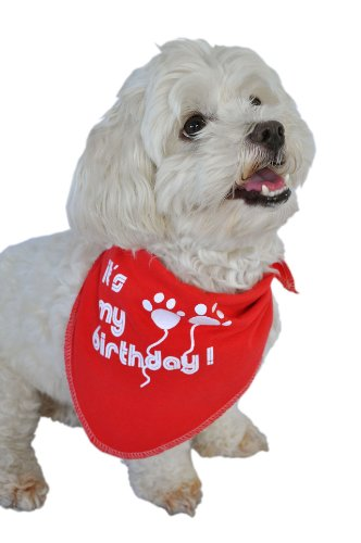 Ruff Ruff And Meow Doggie Bandana, Its My Birthday, Red, Small front-47044