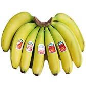 送料無料!(一部地域除く) フィリピン産高原栽培バナナ 4~5房産地箱(12kg)