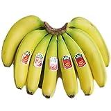 送料無料!(一部地域除く) フィリピン産高原栽培バナナ 大1房 (約2.3kg) ランキングお取り寄せ