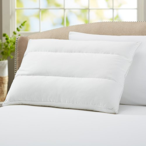 Buy Discount Pinzon Multi-Flex HD Memory Fiber Pillow