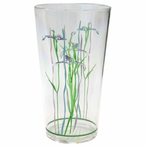 Corelle Coordinates Shadow Iris 19-Ounce Acrylic Glass, Set of 6