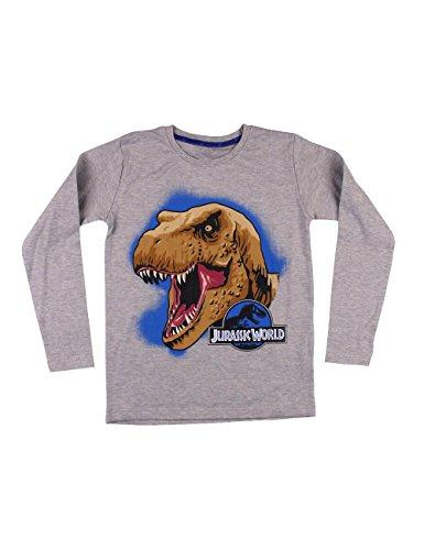 Jurassic World - T-Shirt Manica Lunga T-Rex, Bambino, Grigio (Grigio Antracite), 4 (2-4 anni)