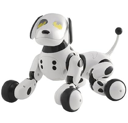 Omnibot Hello! Zoomer 【日本おもちゃ大賞2014 共有玩具部門 大賞】