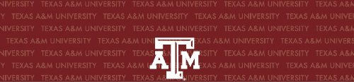 Texas A&amp;M Aggies Team Auto Visor Decal