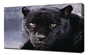 Amazon.com - Black Panther - Canvas Art Print