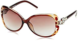 Rockford Butterfly Sunglasses (Transparent and Brown) (RF-137-C3|FREE SIZE)
