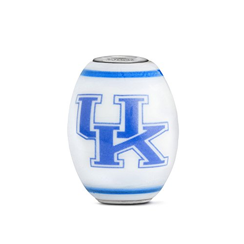 Kentucky Wildcats Large Glass Bead Fits Most European Style Bracelets