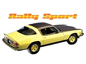 1975 1976 1977 Chevrolet Camaro Rally Sport RS Decals & Stripes Kit ...