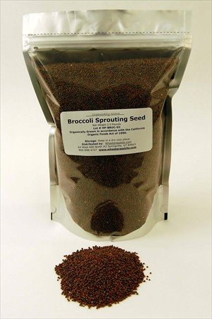 Organic Broccoli Sprouting Seeds -2.5 Lbs- Organic- Edible Seed, Gardening, Hydroponics, Growing Salad Sprout & Food Storage- Brocolli Sprouts Contain Sulforaphane