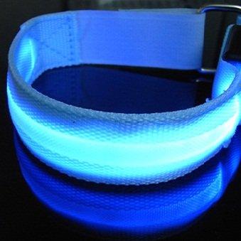 ShineVGift LED Sports Armband Flashing Safety Light for Running, Cycling or Walking at Night Set of 2 (Blue) (Armband Light For Running compare prices)