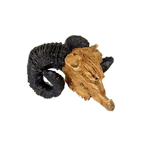 rettili-decorazione-di-terrari-fai-da-te-abbellimento-ornamento-capra-cranio