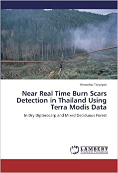 Near Real Time Burn Scars Detection in Thailand Using