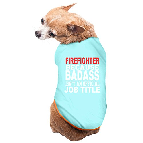 Pets Firefighter Because B A Isn't Official Job Title T-shirt SkyBlue (Dog Firefighter Costume)