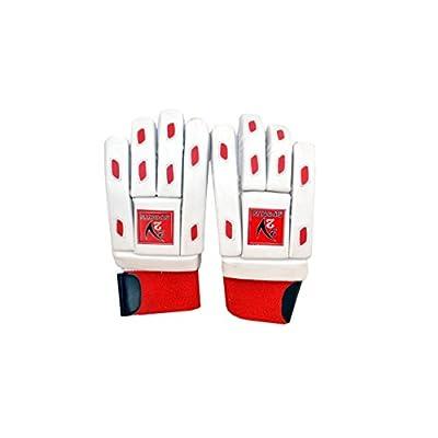V22 Beginners Batting Gloves