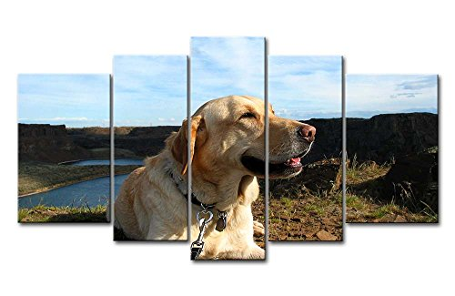 5 Piece Wall Art Painting Golden Retriever Up Ahead In The Distance Prints On Canvas The Picture Animal Pictures Oil For Home Modern Decoration Print Decor For Kids Room