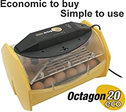 Brinsea Octagon 20 ECO Manual Turn Egg Incubator