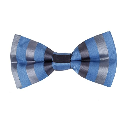 dbd7a20c-sera-blu-regalo-stripes-idea-in-collettame-polyster-pre-legato-idea-papillon-regalo-per-il-