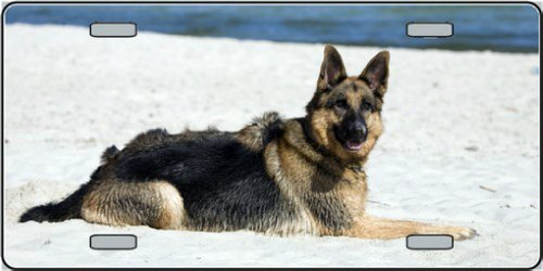 LP-2169 German Shepherd Dog Pet Novelty License Plates- Full Color Photography License Plates