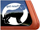 Got Newf? Newfoundland Dog Vinyl Window Decal Sticker