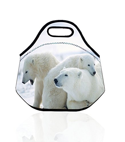 polar-bear-portable-insulated-picnic-lunch-bag-tote-zipper-organizer-lunch-storages
