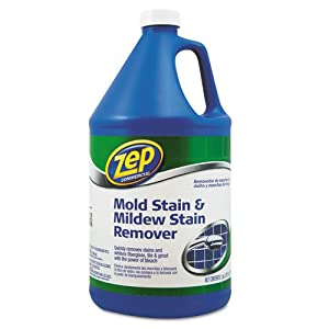 Amazon Com Mold Stain And Mildew Stain Remover 1 Gal