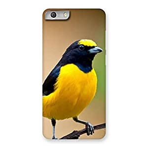 Impressive Sweet Bird Back Case Cover for Micromax Canvas Knight 2