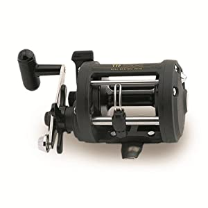 Shimano TR Levelwind Conventional Reel (4.3:1) by Shimano