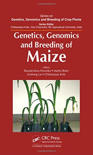 Genetics, Genomics and Breeding of Maize (Genetics, Genomics and Breeding of Crop Plants)