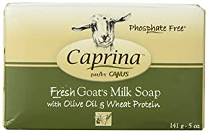 Olive Oil & Wheat Protein Bar Soap Canus Vermont 5 oz Bar Soap