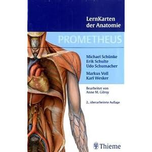 eBook Cover für  Prometheus Lernkarten der Anatomie