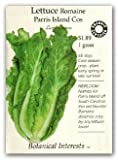 Lettuce Romaine Parris Island Cos Certified Organic Heirloom Seeds 275 Seeds
