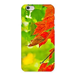Special Auti Leaf Back Case Cover for iPhone 6 6S
