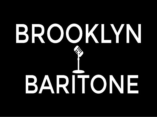 Brooklyn Baritone NYC Time Lapse - Season 1