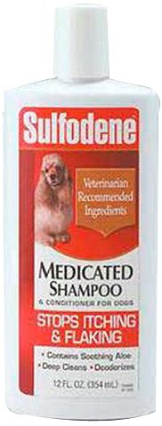 Can U Use Conditioner On Dogs