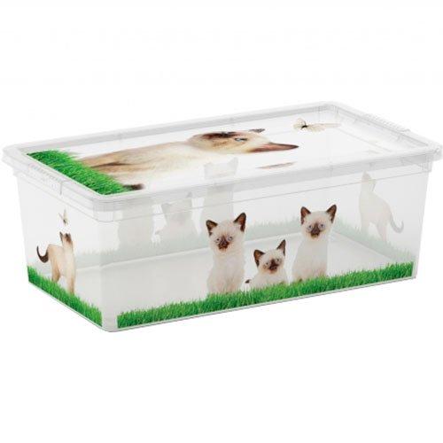 Kis 8407000205201scatola C Box Style Puppy e Kitten, 6l, plastica, Multicolore, 33,5x 19x 12cm