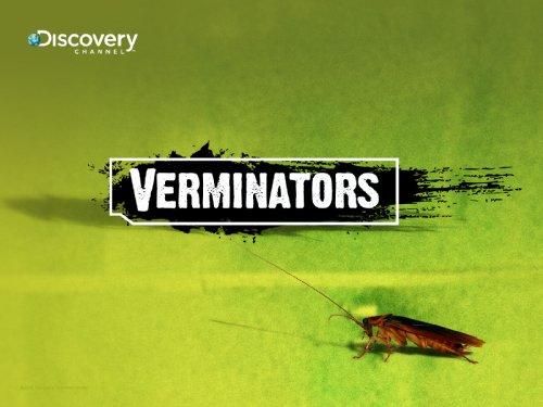 Zabij szkodnika! / Verminators (2008) PL.TVRip.XviD / Lektor PL